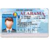 alabama-drivers-license-template-01