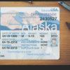 alaska-drivers-license-template-03