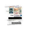 arizona-driver-license-template-06