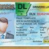 arkansas-driver-license-template-04