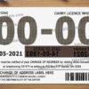 australian-drivers-license-template-05