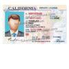 california-driver-license-psd-01