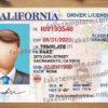 california-driver-license-psd-03