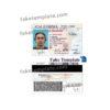 california-driver-license-psd-06
