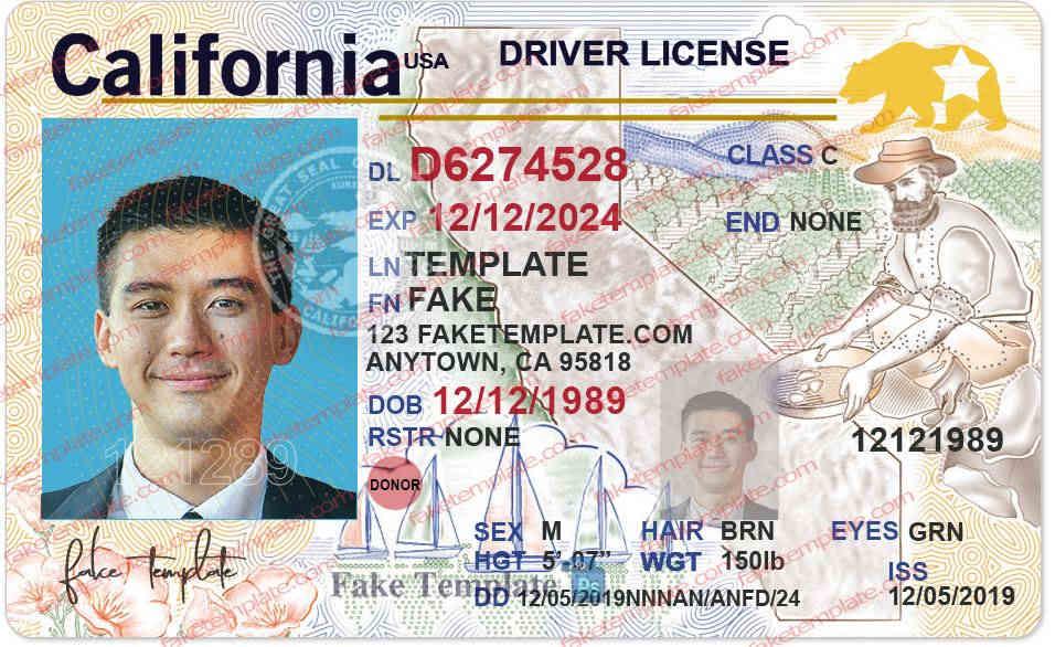 california-drivers-license-template-01