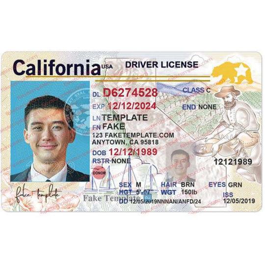 california-drivers-license-template-08