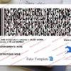 delaware-driver-license-back-03