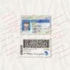 delaware-driver-license-template-04