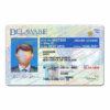 delaware-driver-license-template-06