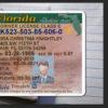 florida-driver-license-template-02
