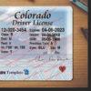 colorado-driver-license-template-03