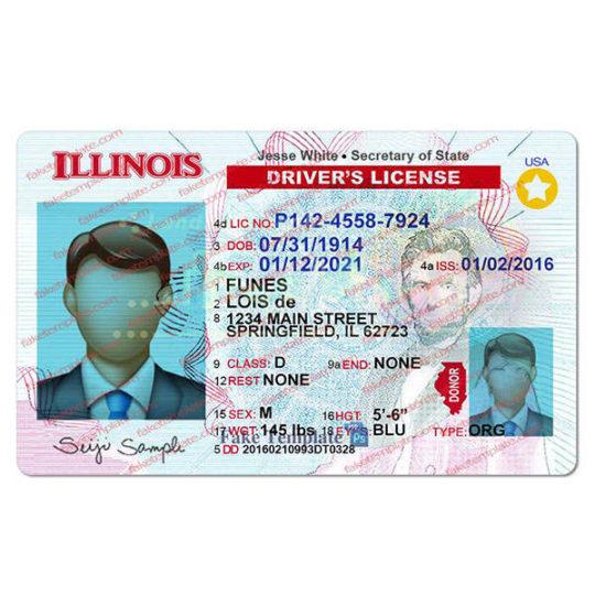 illinois-driver-license-template-07