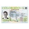 colorado-drivers-license-template-01