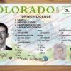 colorado-drivers-license-template-03