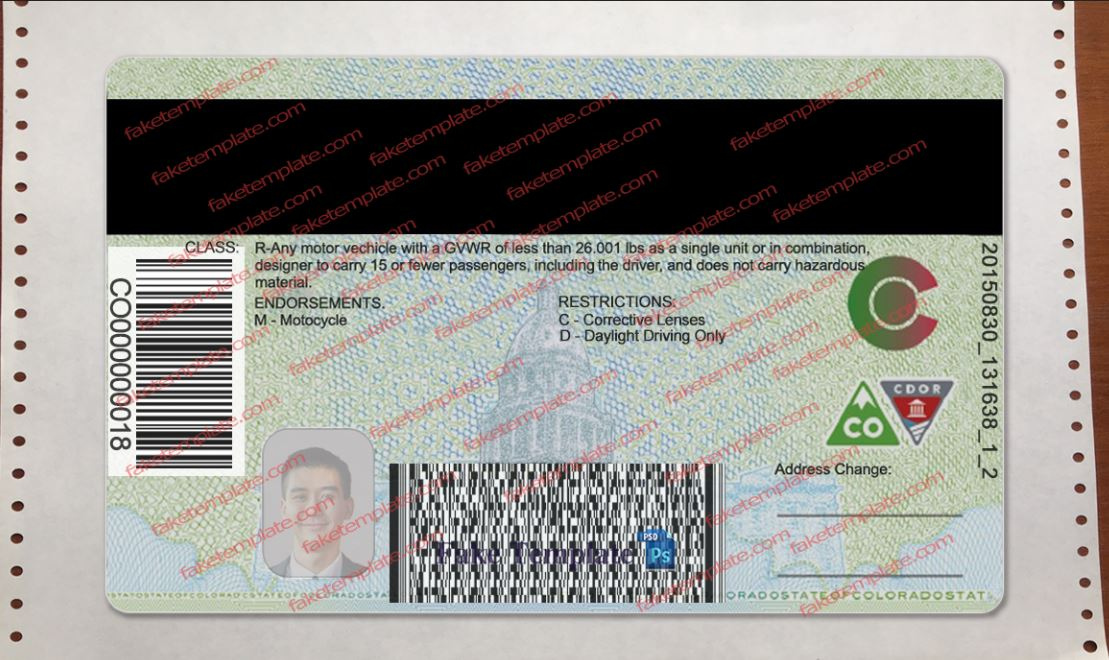 back-colorado-drivers-license-04